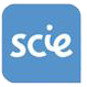 Social Care Institute for Excellence -SCIE